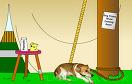 逃脫動物收容所2遊戲 / 逃脫動物收容所2 Game