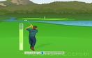 精確高爾夫賽遊戲 / 精確高爾夫賽 Game