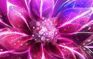 夢幻花朵找字母遊戲 / 夢幻花朵找字母 Game