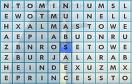 找英語單詞遊戲 / 找英語單詞 Game